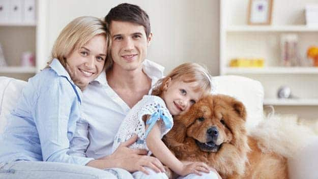 Wills & Trusts dog-young-family Direct Wills Suffolk